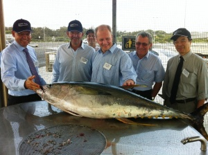 WEB NSW Ports Community Fish Cleaning Facility